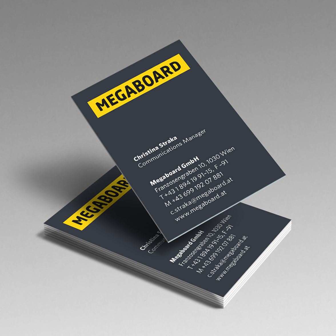 Megaboard1